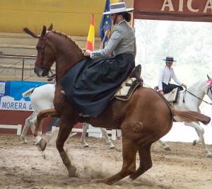 amazonas españolas x