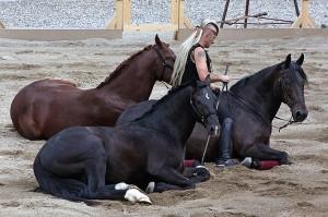 Marcello Ugoletti y sus caballos.