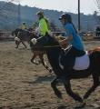 Liga Catalana de Pony Games