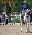Rafael Arcos con 'Disparate' en la X Copa de SM el Rey de Doma Vaquera. Foto: Ramón Azañón